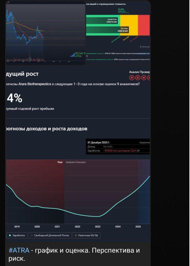 rezan invest перспектива и риск
