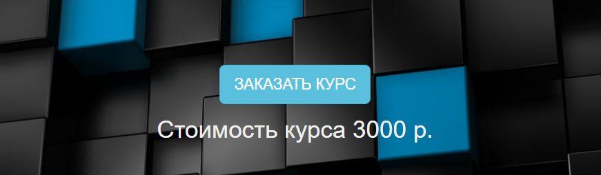 Стоимость курса Александра Сошникова