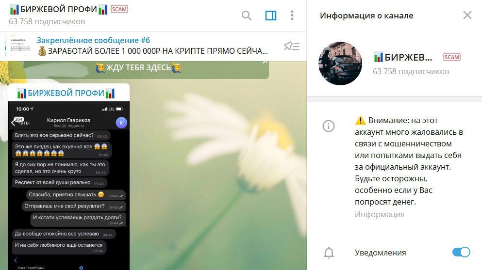 Телеграмм канал Алексей Багирова