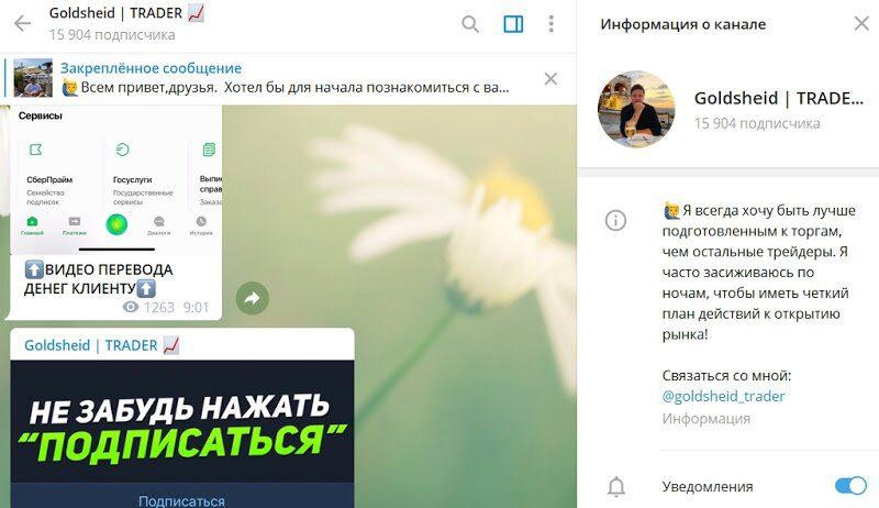 Информация о канале Goldsheid TRADER Грегори Голдшейда