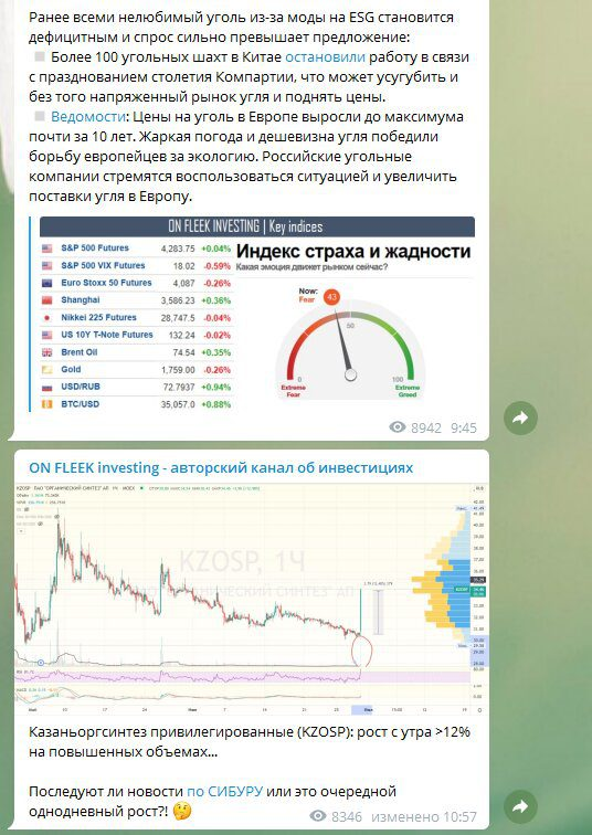 Телеграмм канал ON FLEEK investing