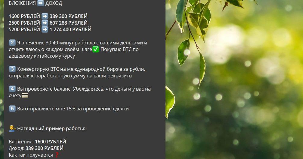 Телеграмм Сергея Кравченко